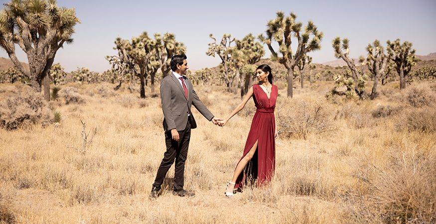 Priya + Anuj // Engagement Submission By Peter Nguyen Studio