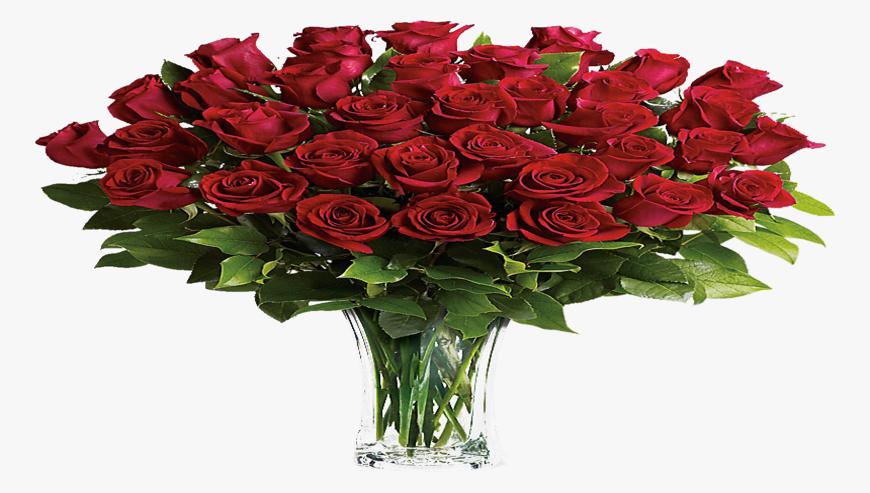 Alaid-Flower3