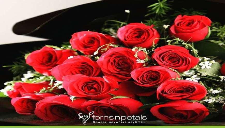 Ferns-N-Petals4