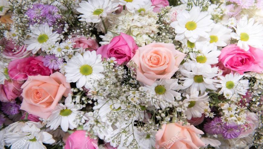 Flower-Gallery5-