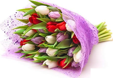 Flower-Shoppe2