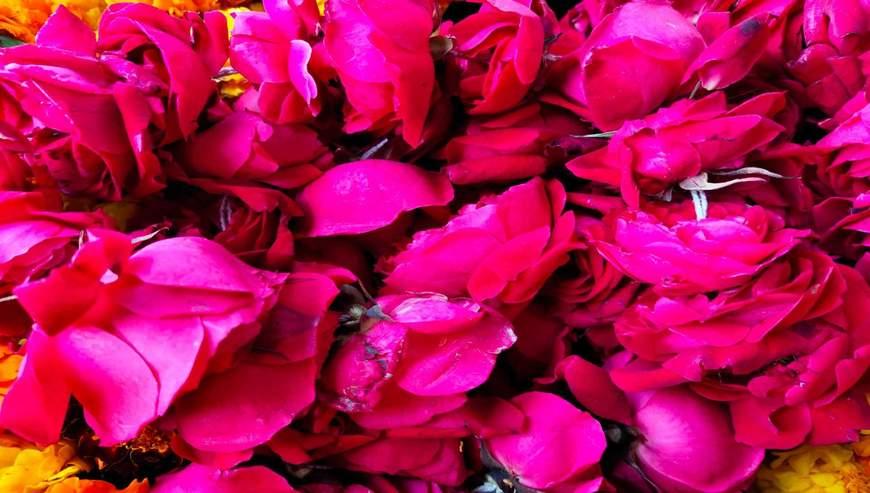 Irfan-Flower-Shop1