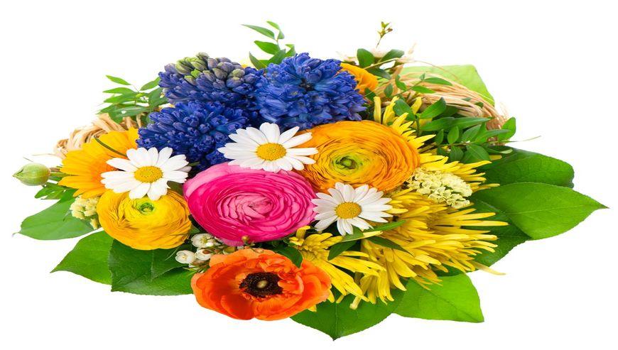 Irfan-Flower-Shop3