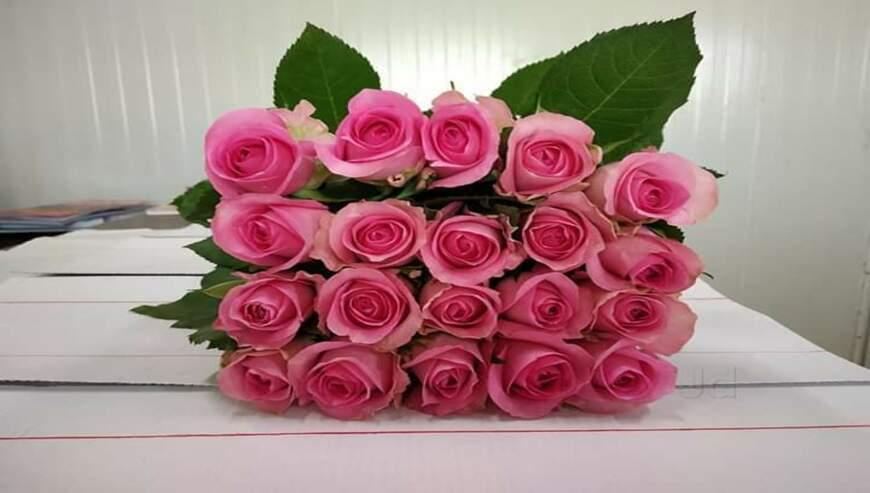 Manvi-Flowers1