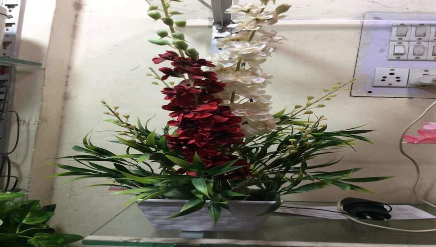 Mohini-Flower3
