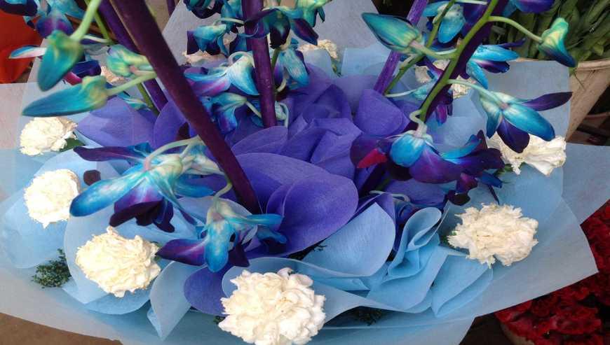 Namo-Flowers2