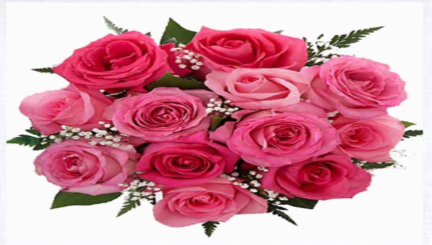 Orionz-Flowers2