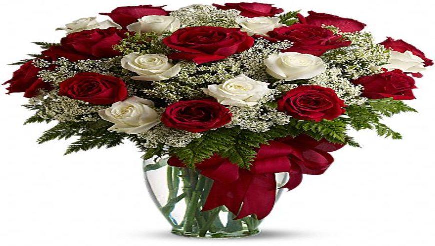 Qadimi-Flowers1