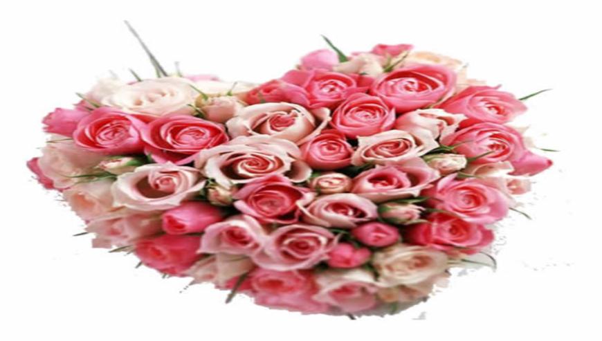Sai-Flower1