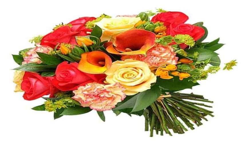 Sai-Flower4