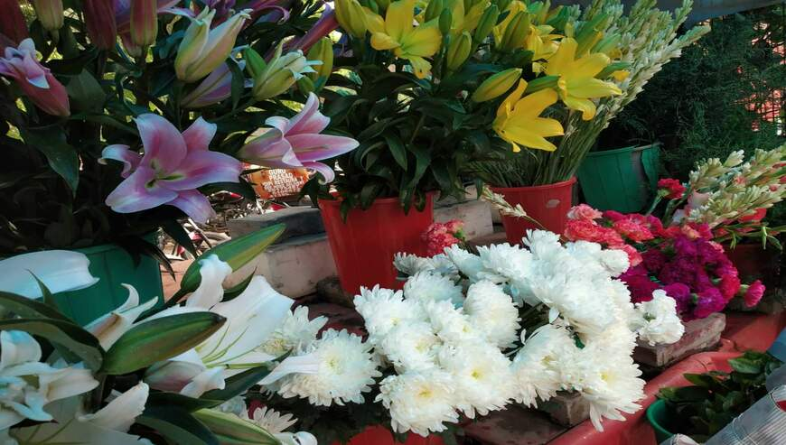 Singh-Flowers1-1