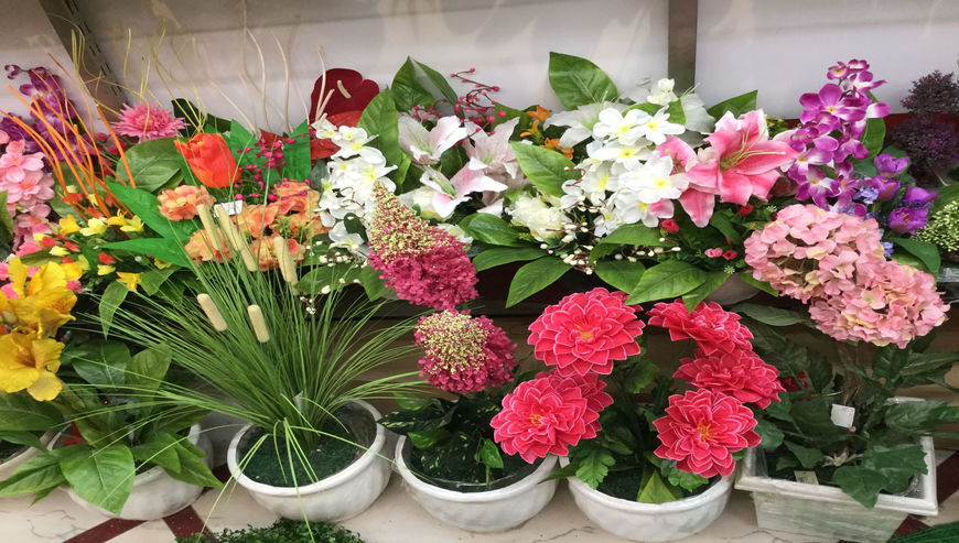 Vatika-Flowers1