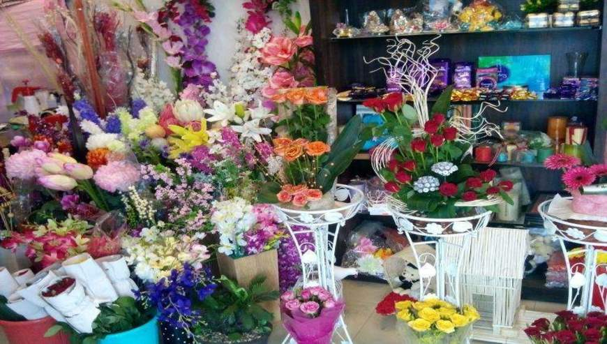 Carnations-Flora