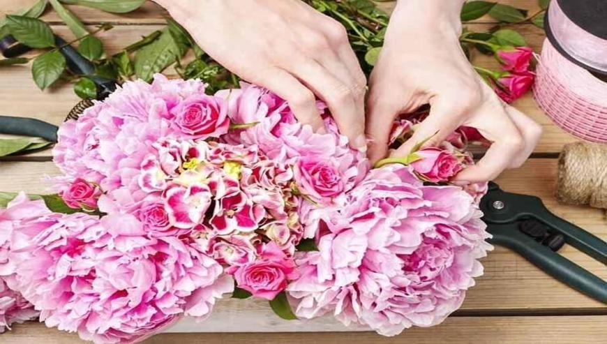Flower-Plant-Flowers-Delivery-Raipur
